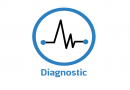 Diagnostic BioSM Indonesia